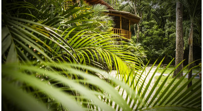 Pacifica Surf Studios - World's Best Eco Resorts, Eco Hotels, Ecolodges, Eco Cabins and Eco Retreats - Flunking Monkey